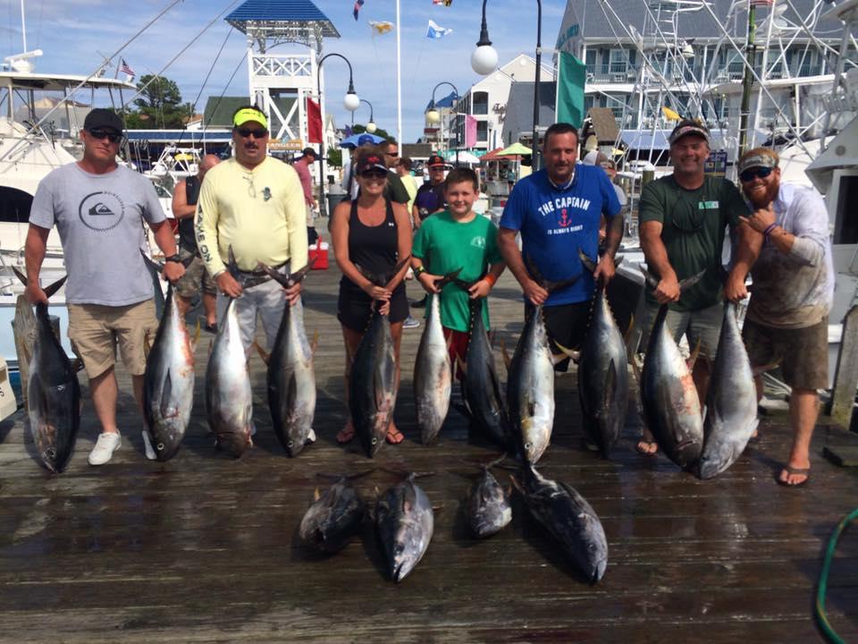 Fishing report fishing report ocean city md big for Big fish classic