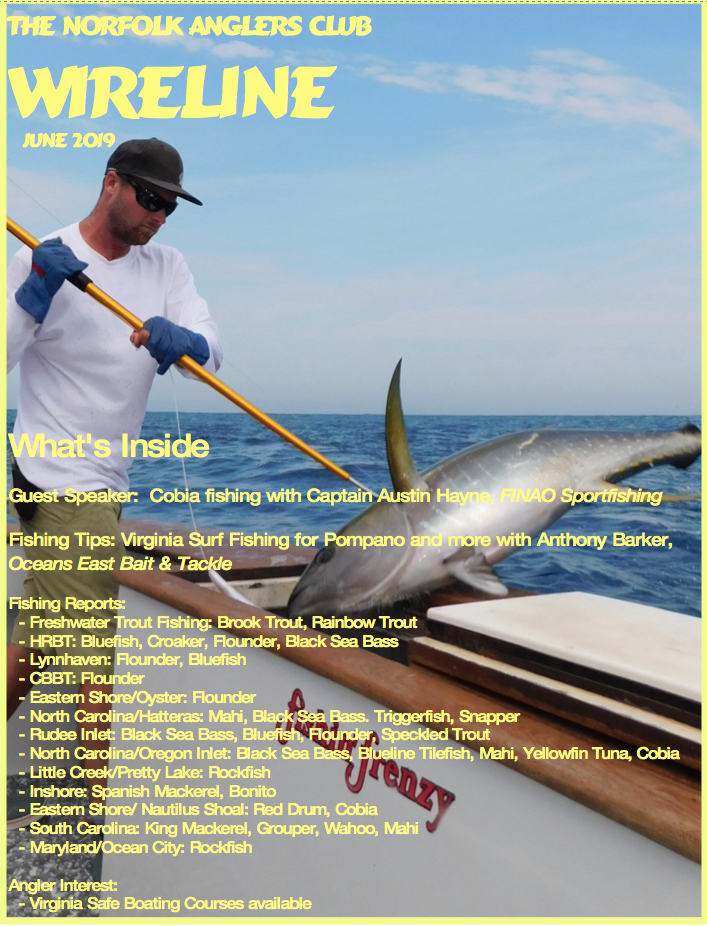 Click image for larger version.  Name:June 2019 Wireline Cover.png Views:11 Size:1.13 MB ID:253073