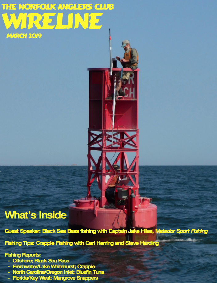 Click image for larger version.  Name:Wireline Cover Mar 2019.png Views:102 Size:1.09 MB ID:252577