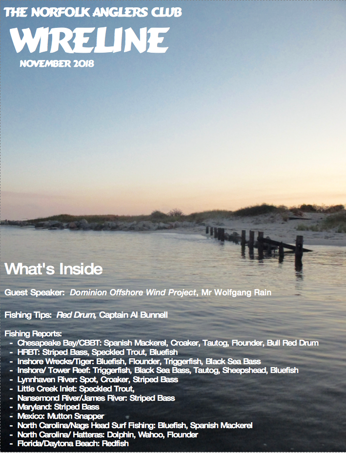 Click image for larger version.  Name:Wireline Cover November 2018.png Views:83 Size:1.10 MB ID:251957